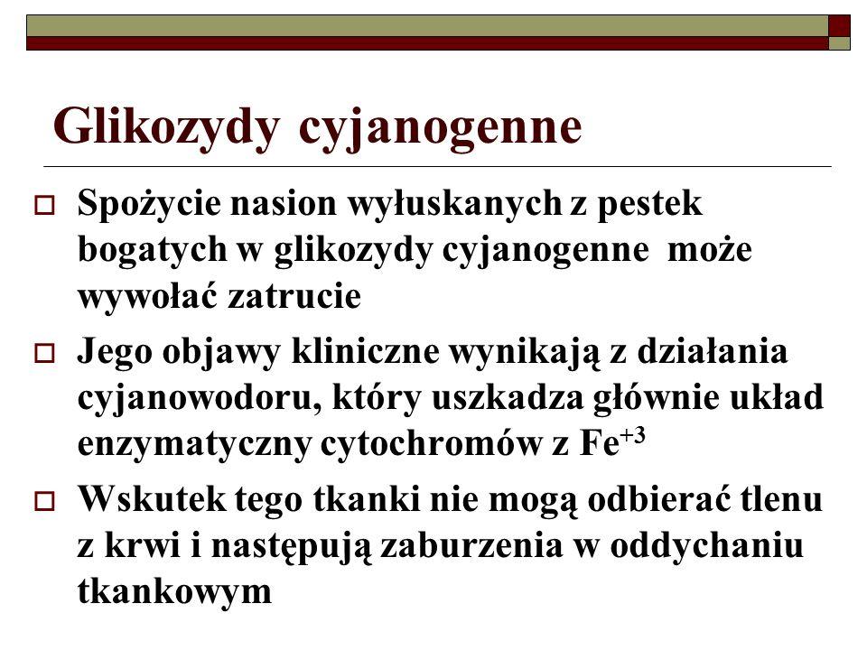 Glikozydy cyjanogenne Spożycie nasion wyłuskanych z pestek bogatych w glikozydy cyjanogenne może wywołać zatrucie Jego objawy kliniczne wynikają z dzi
