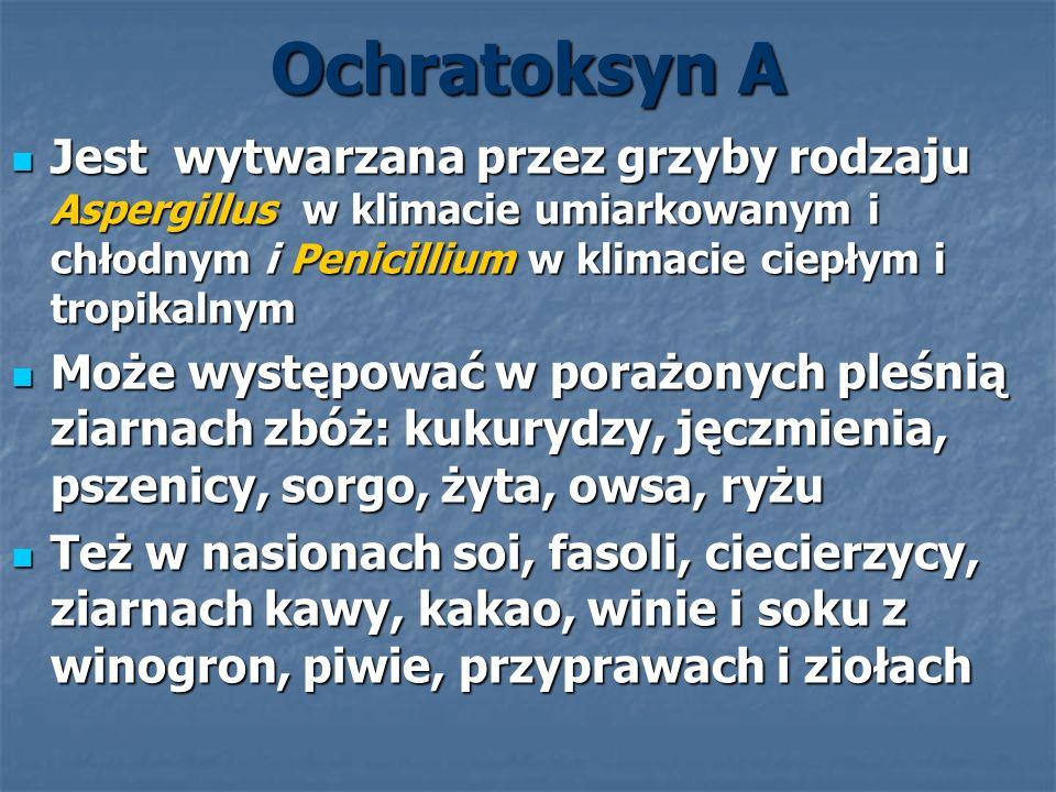 Ochratoksyn A Jest wytwarzana przez grzyby rodzaju Aspergillus w klimacie umiarkowanym i chłodnym i Penicillium w klimacie ciepłym i tropikalnym Jest