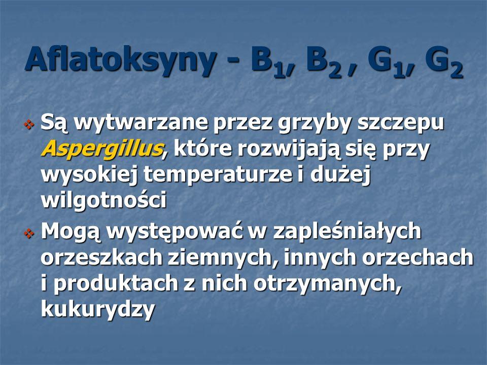 Aflatoksyny - B 1, B 2, G 1, G 2 Są wytwarzane przez grzyby szczepu Aspergillus, które rozwijają się przy wysokiej temperaturze i dużej wilgotności Są
