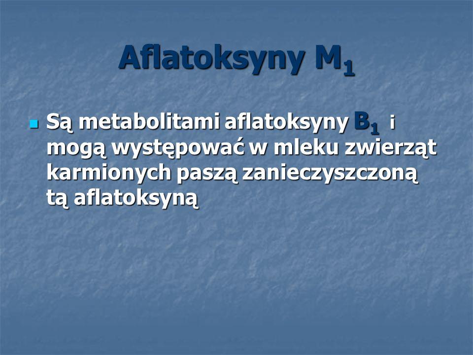 Aflatoksyny M 1 Są metabolitami aflatoksyny B 1 i mogą występować w mleku zwierząt karmionych paszą zanieczyszczoną tą aflatoksyną Są metabolitami afl