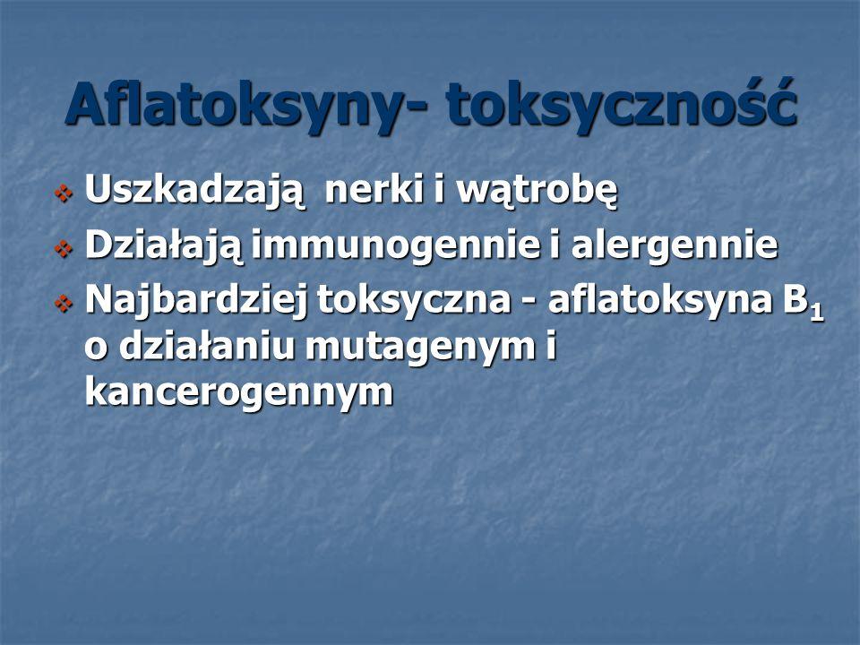 Aflatoksyny- toksyczność Uszkadzają nerki i wątrobę Uszkadzają nerki i wątrobę Działają immunogennie i alergennie Działają immunogennie i alergennie N