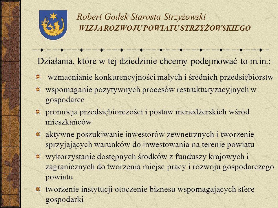 Robert Godek Starosta Strzyżowski WIZJA ROZWOJU POWIATU STRZYŻOWSKIEGO Działania, które w tej dziedzinie chcemy podejmować to m.in.: wzmacnianie konku