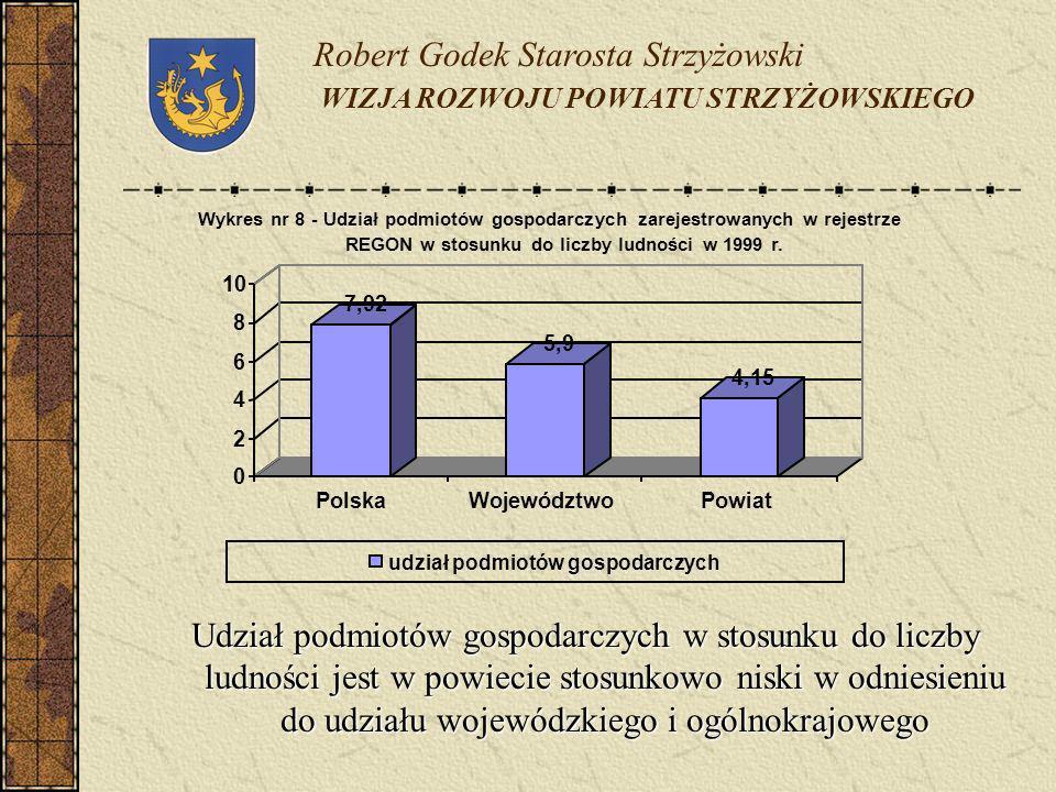 Udział podmiotów gospodarczych w stosunku do liczby ludności jest w powiecie stosunkowo niski w odniesieniu do udziału wojewódzkiego i ogólnokrajowego