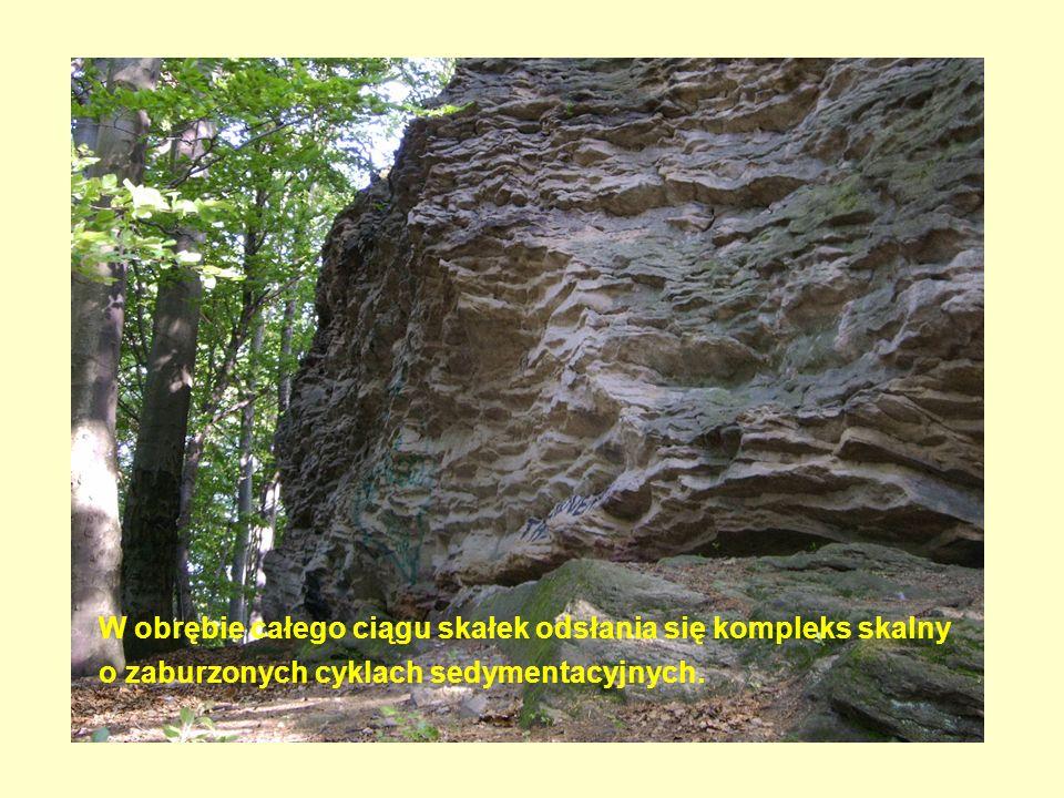 W obrębie całego ciągu skałek odsłania się kompleks skalny o zaburzonych cyklach sedymentacyjnych.