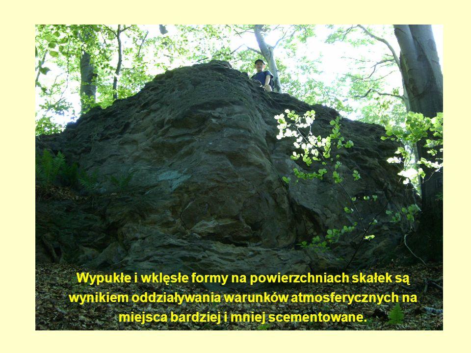 Wypukłe i wklęsłe formy na powierzchniach skałek są wynikiem oddziaływania warunków atmosferycznych na miejsca bardziej i mniej scementowane.