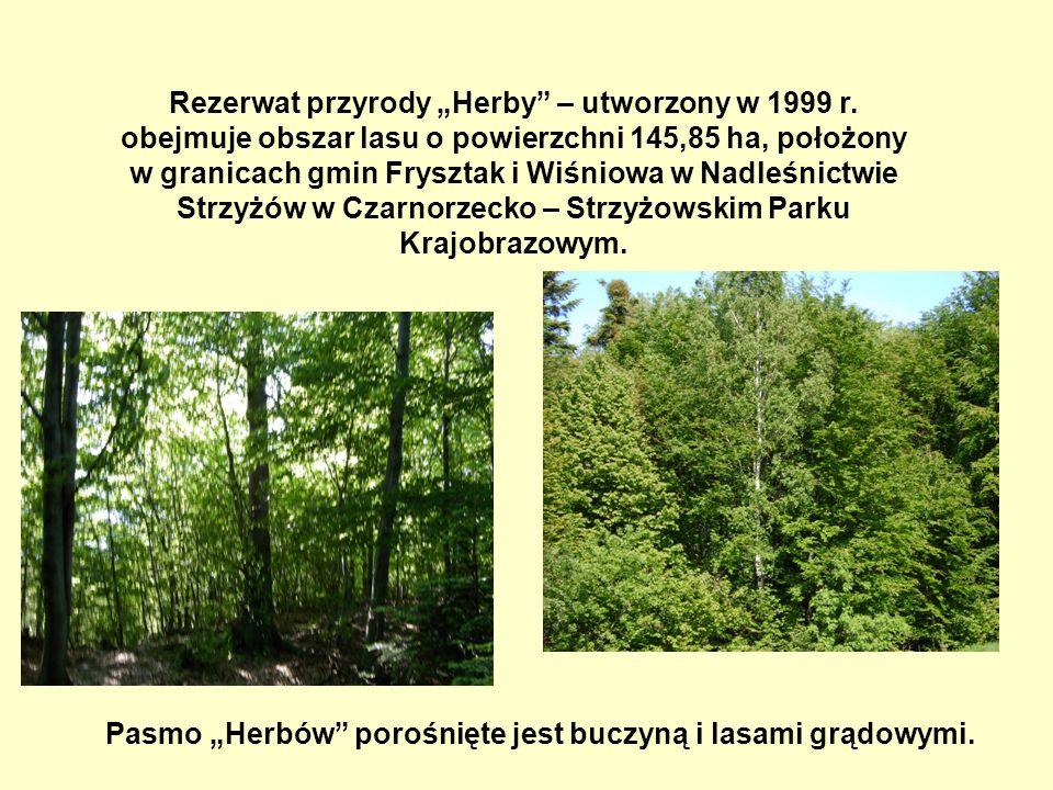 Rezerwat przyrody Herby – utworzony w 1999 r.