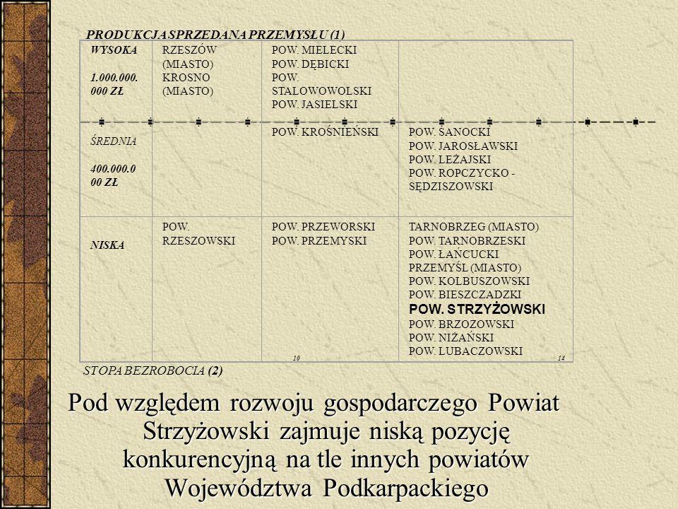Powiat Strzyżowski położony jest w obszarze problemowym środkowo – zachodnim województwa podkarpackiego, charakteryzującym się wg Strategii rozwoju wo