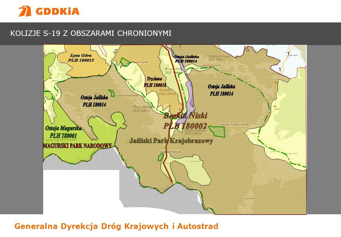 Generalna Dyrekcja Dróg Krajowych i Autostrad KOLIZJE S-19 Z OBSZARAMI CHRONIONYMI