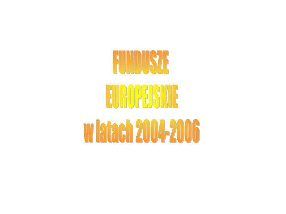 Seminarium wewnętrzne IETU, 13 marzec 2003 11 Inicjatywy Wspólnoty Cel: Rozwiązywanie problemów wspólnych dla całego obszaru Unii.