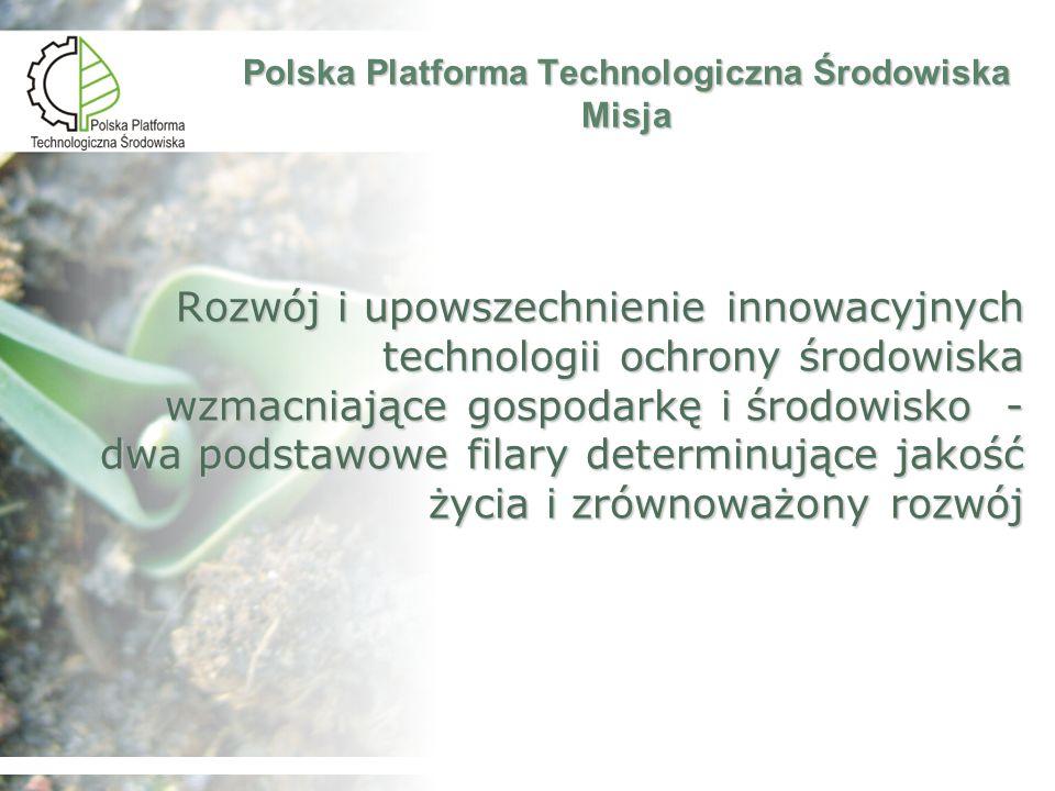 Wizja zostanie opracowana w ramach działalności platformy i powinna sięgać do roku 2020 Polska Platforma Technologiczna Środowiska Wizja