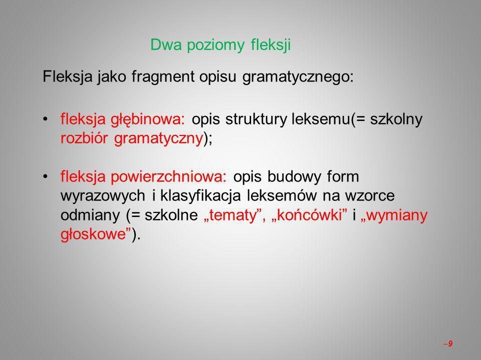 Fleksja jako fragment opisu gramatycznego: fleksja głębinowa: opis struktury leksemu(= szkolny rozbiór gramatyczny); fleksja powierzchniowa: opis budowy form wyrazowych i klasyfikacja leksemów na wzorce odmiany (= szkolne tematy, końcówki i wymiany głoskowe).