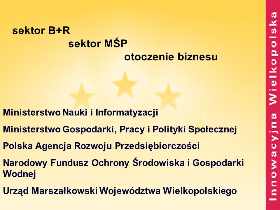 sektor B+R sektor MŚP otoczenie biznesu Ministerstwo Nauki i Informatyzacji Ministerstwo Gospodarki, Pracy i Polityki Społecznej Polska Agencja Rozwoj