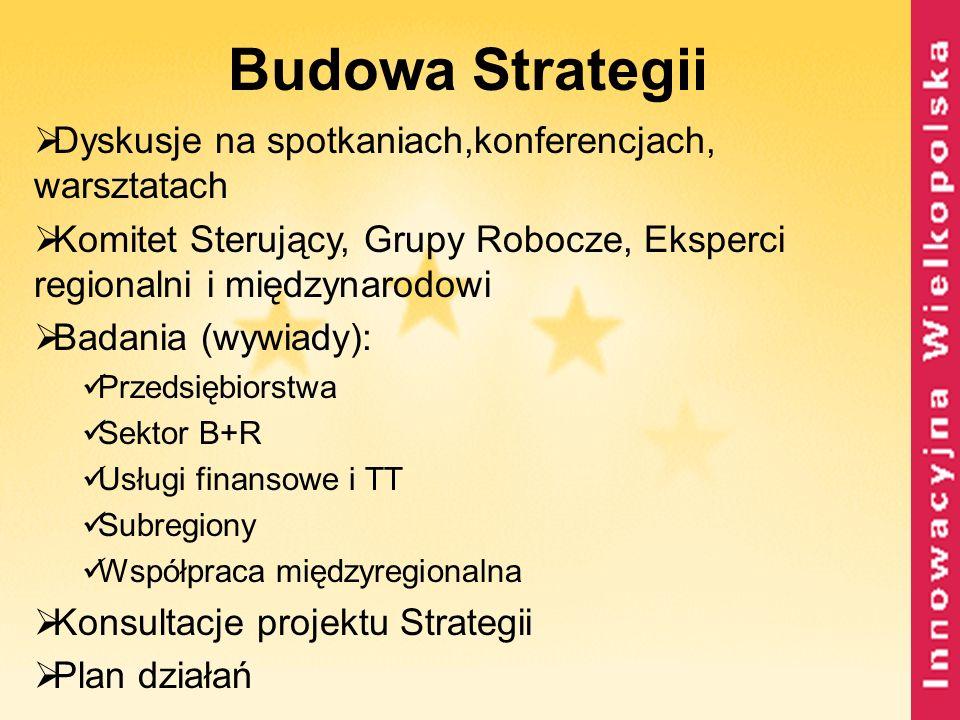 Budowa Strategii Dyskusje na spotkaniach,konferencjach, warsztatach Komitet Sterujący, Grupy Robocze, Eksperci regionalni i międzynarodowi Badania (wy