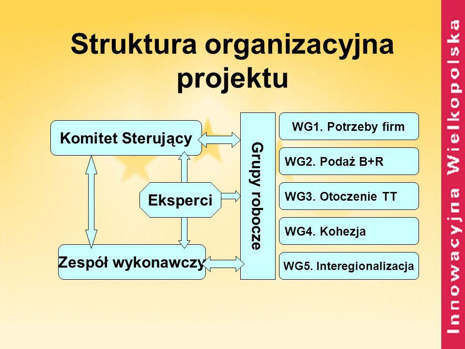Struktura organizacyjna projektu Komitet Sterujący Zespół wykonawczy Eksperci Grupy robocze WG1. Potrzeby firm WG2. Podaż B+R WG3. Otoczenie TT WG4. K