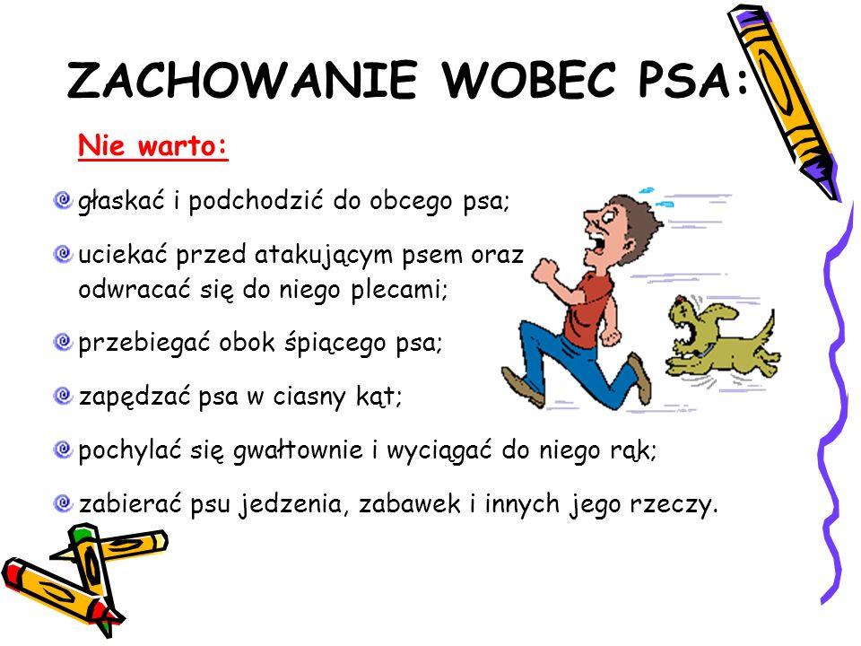 ZACHOWANIE WOBEC PSA: Nie warto: głaskać i podchodzić do obcego psa; uciekać przed atakującym psem oraz odwracać się do niego plecami; przebiegać obok śpiącego psa; zapędzać psa w ciasny kąt; pochylać się gwałtownie i wyciągać do niego rąk; zabierać psu jedzenia, zabawek i innych jego rzeczy.