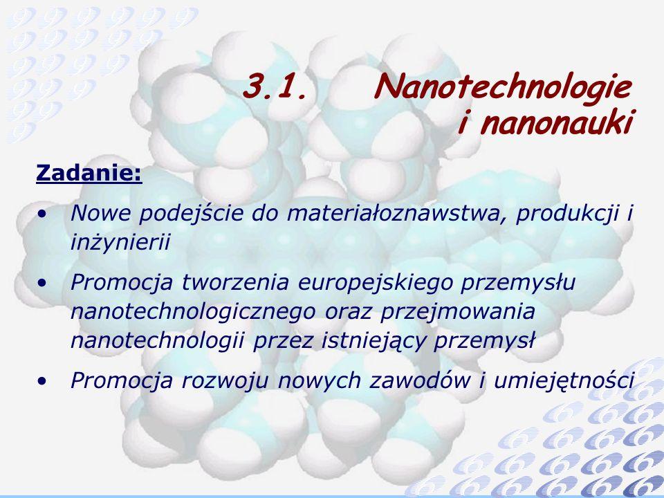 Zadanie: Nowe podejście do materiałoznawstwa, produkcji i inżynierii Promocja tworzenia europejskiego przemysłu nanotechnologicznego oraz przejmowania nanotechnologii przez istniejący przemysł Promocja rozwoju nowych zawodów i umiejętności 3.1.