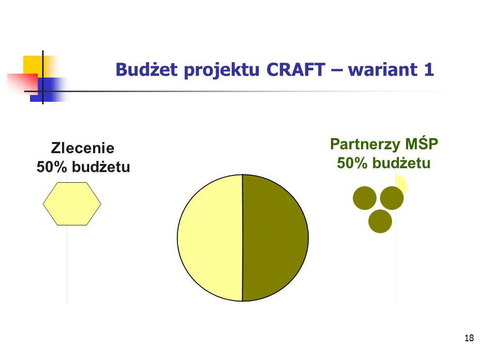18 Budżet projektu CRAFT – wariant 1 Zlecenie 50% budżetu Partnerzy MŚP 50% budżetu