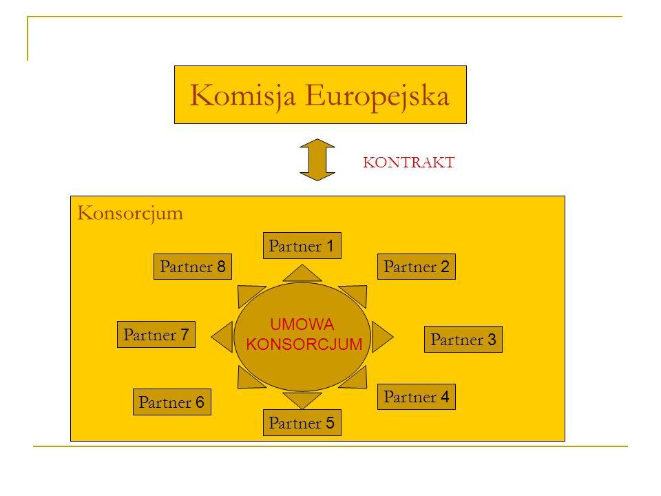 Komisja Europejska Konsorcjum Partner 1 Partner 2 Partner 3 Partner 4 Partner 5 Partner 8 Partner 7 Partner 6 KONTRAKT UMOWA KONSORCJUM
