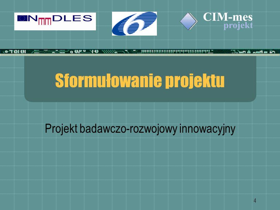 4 Sformułowanie projektu Projekt badawczo-rozwojowy innowacyjny