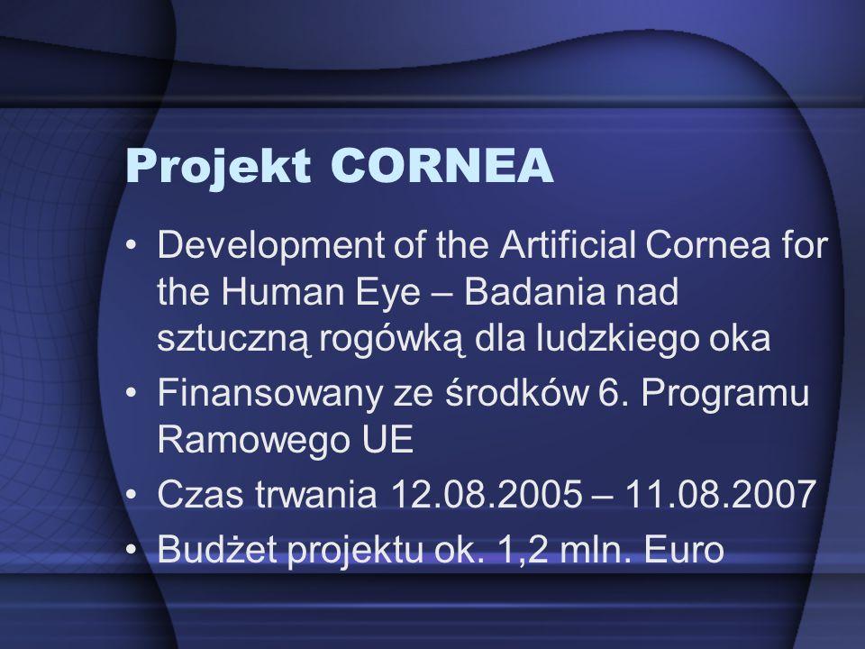 Projekt CORNEA Development of the Artificial Cornea for the Human Eye – Badania nad sztuczną rogówką dla ludzkiego oka Finansowany ze środków 6. Progr
