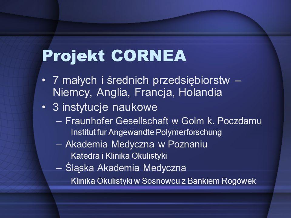 Projekt CORNEA 7 małych i średnich przedsiębiorstw – Niemcy, Anglia, Francja, Holandia 3 instytucje naukowe –Fraunhofer Gesellschaft w Golm k. Poczdam