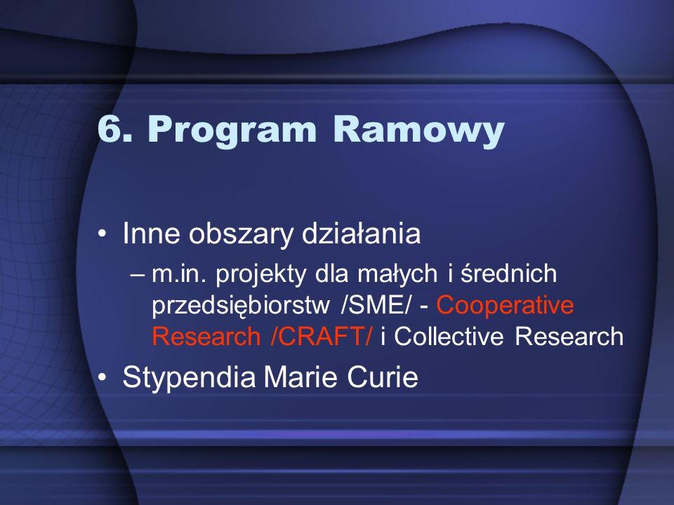6. Program Ramowy Inne obszary działania –m.in. projekty dla małych i średnich przedsiębiorstw /SME/ - Cooperative Research /CRAFT/ i Collective Resea