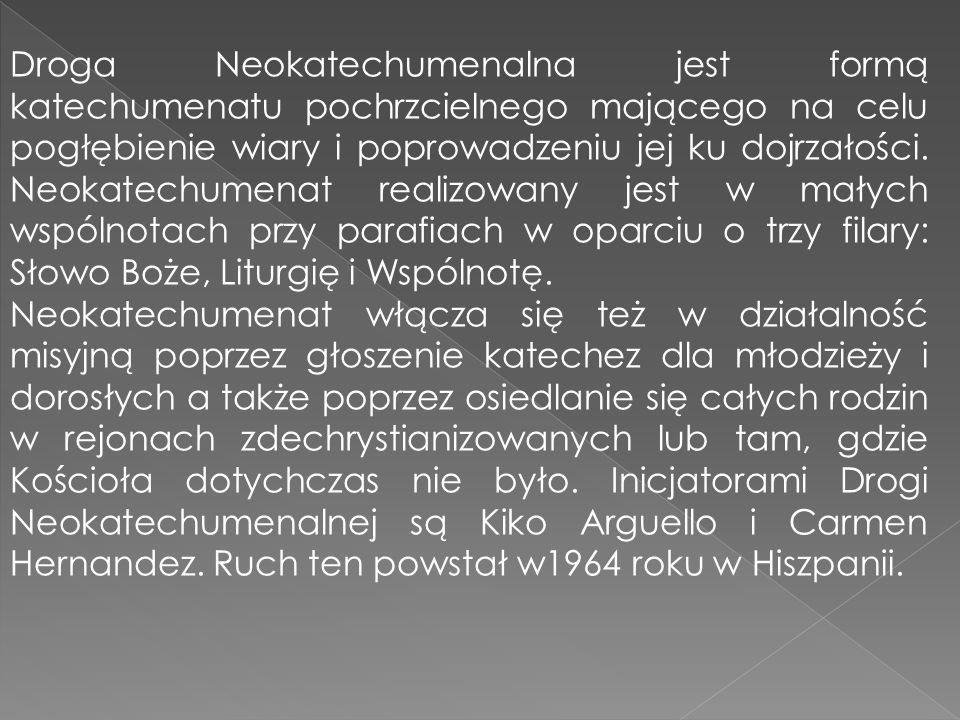 Droga Neokatechumenalna jest formą katechumenatu pochrzcielnego mającego na celu pogłębienie wiary i poprowadzeniu jej ku dojrzałości. Neokatechumenat
