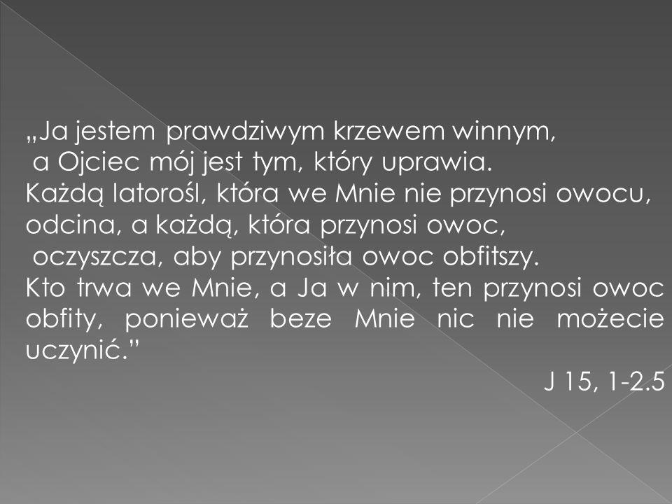 1.Napisz jakie grupy działają w Twojej parafii. 2.