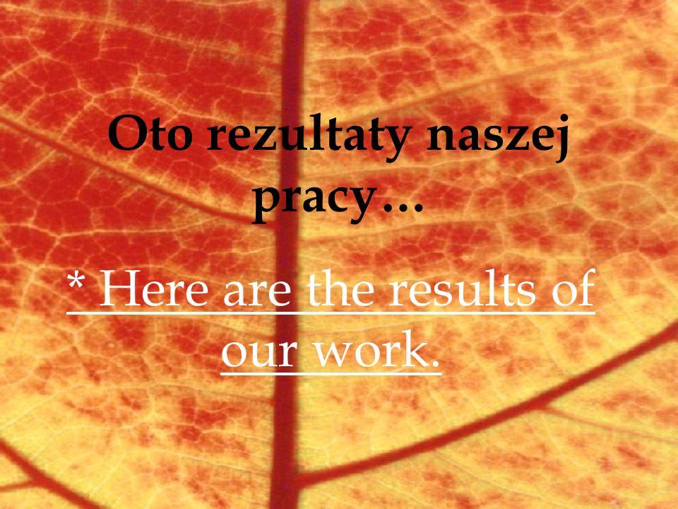 Oto rezultaty naszej pracy… * Here are the results of our work.