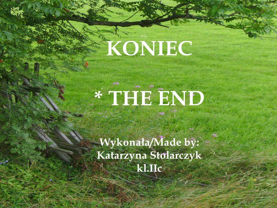 KONIEC * THE END Wykonała/Made by: Katarzyna Stolarczyk kl.IIc