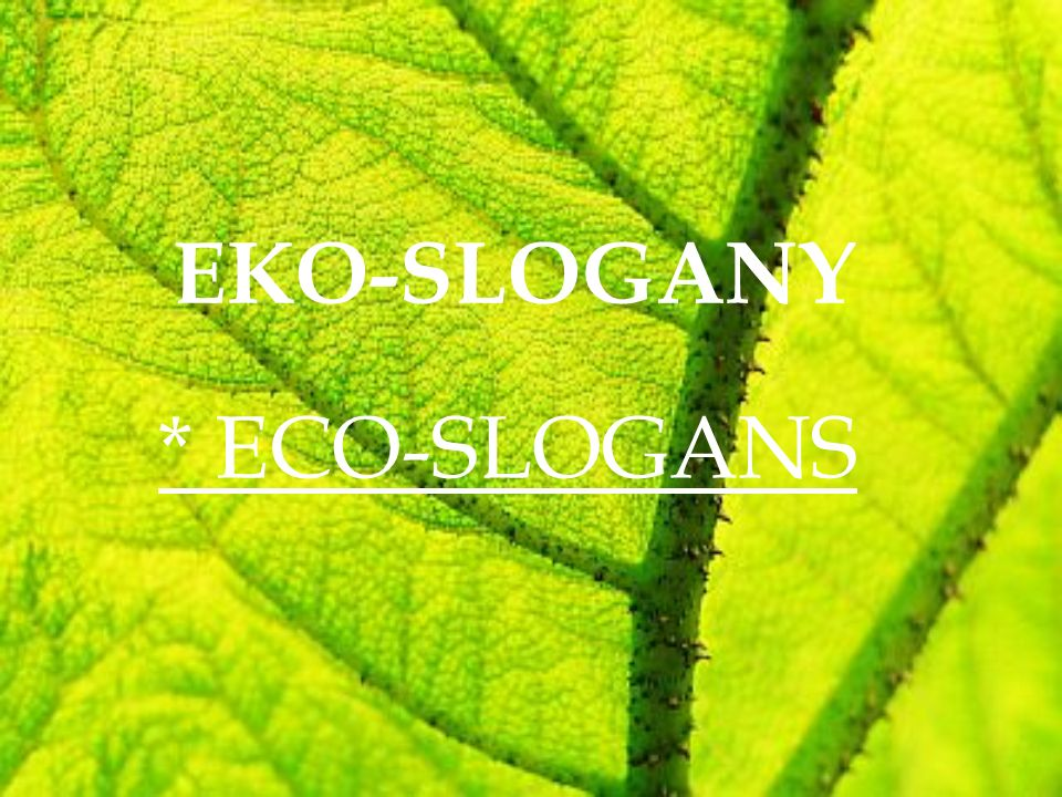 EKO-SLOGANY * ECO-SLOGANS