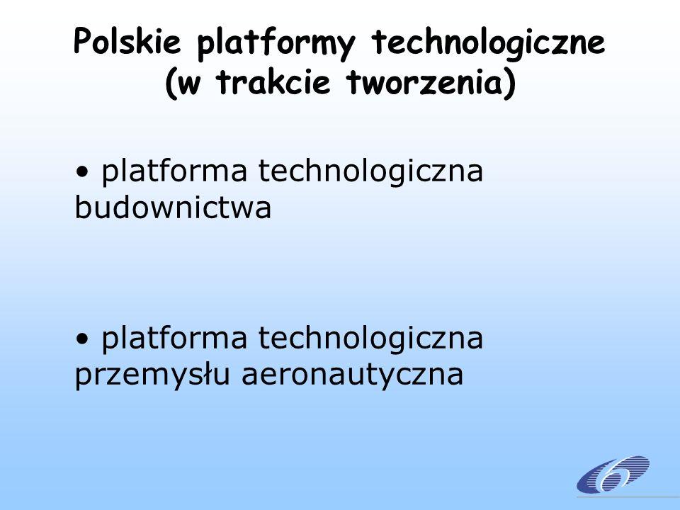 Europejskie platformy technologiczne (w trakcie tworzenia) zaawansowane technologie o technologie wodorowe i ogniwa paliwowe o nanoelektronika o nanobiotechnologia o restrukturyzacja tradycyjnych sektorów przemysłowych o niskowęglowa stal o tekstylia i odzież o produkcja o marynarka morska o budownictwo o nowe technologie dla zrównoważonego rozwoju o lotnictwo o transport drogowy i kolejowy o zrównoważona chemia o genomika roślin o zaopatrzenie w wodę o fotowoltaika o zrównoważone rolnictwo o usługi bazujące na nowych technologiach o mobilna i bezprzewodowa telekomunikacja o bezpieczniejsze usługi medyczne