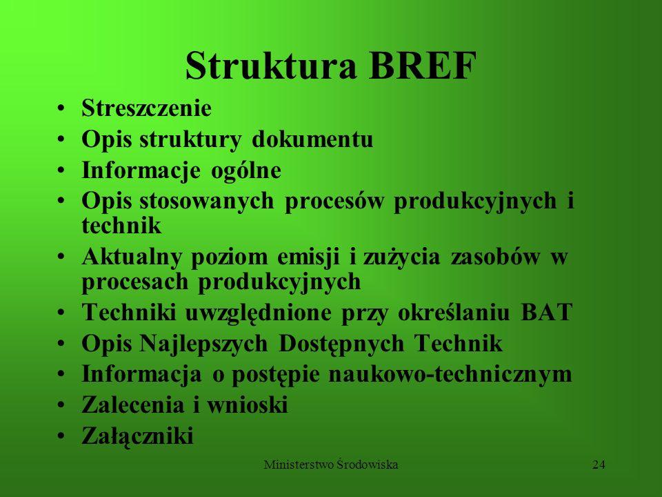 Ministerstwo Środowiska24 Struktura BREF Streszczenie Opis struktury dokumentu Informacje ogólne Opis stosowanych procesów produkcyjnych i technik Akt
