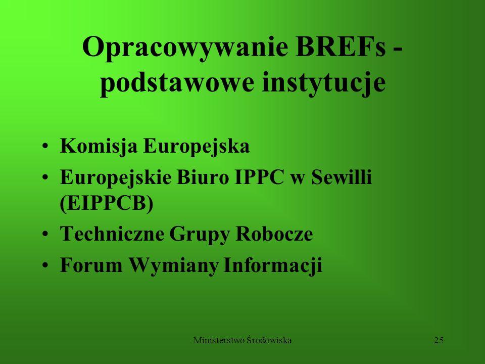 Ministerstwo Środowiska25 Opracowywanie BREFs - podstawowe instytucje Komisja Europejska Europejskie Biuro IPPC w Sewilli (EIPPCB) Techniczne Grupy Ro