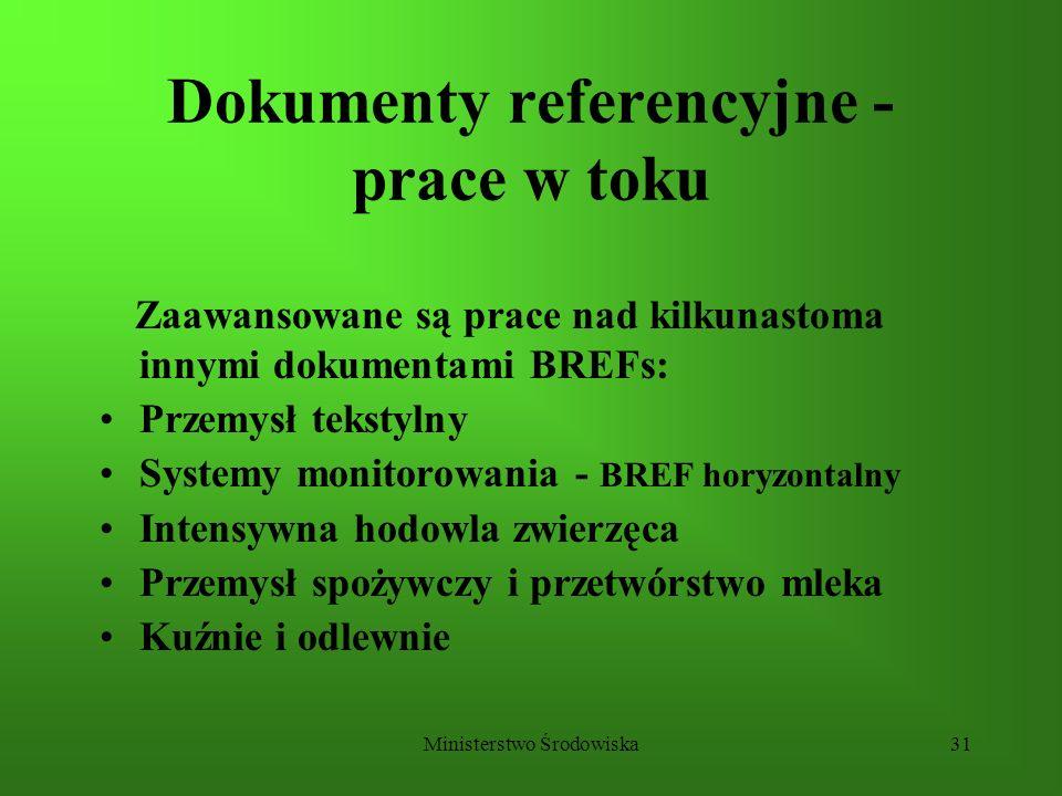 Ministerstwo Środowiska31 Dokumenty referencyjne - prace w toku Zaawansowane są prace nad kilkunastoma innymi dokumentami BREFs: Przemysł tekstylny Sy
