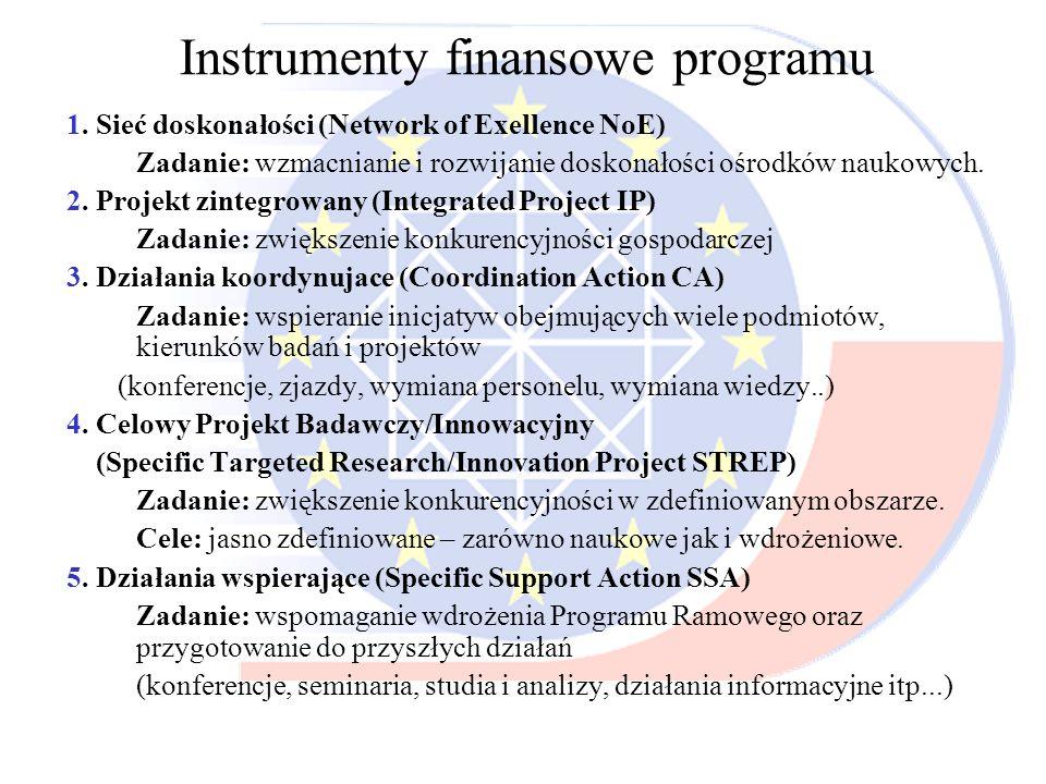 Instrumenty finansowe programu 1. Sieć doskonałości (Network of Exellence NoE) Zadanie: wzmacnianie i rozwijanie doskonałości ośrodków naukowych. 2. P