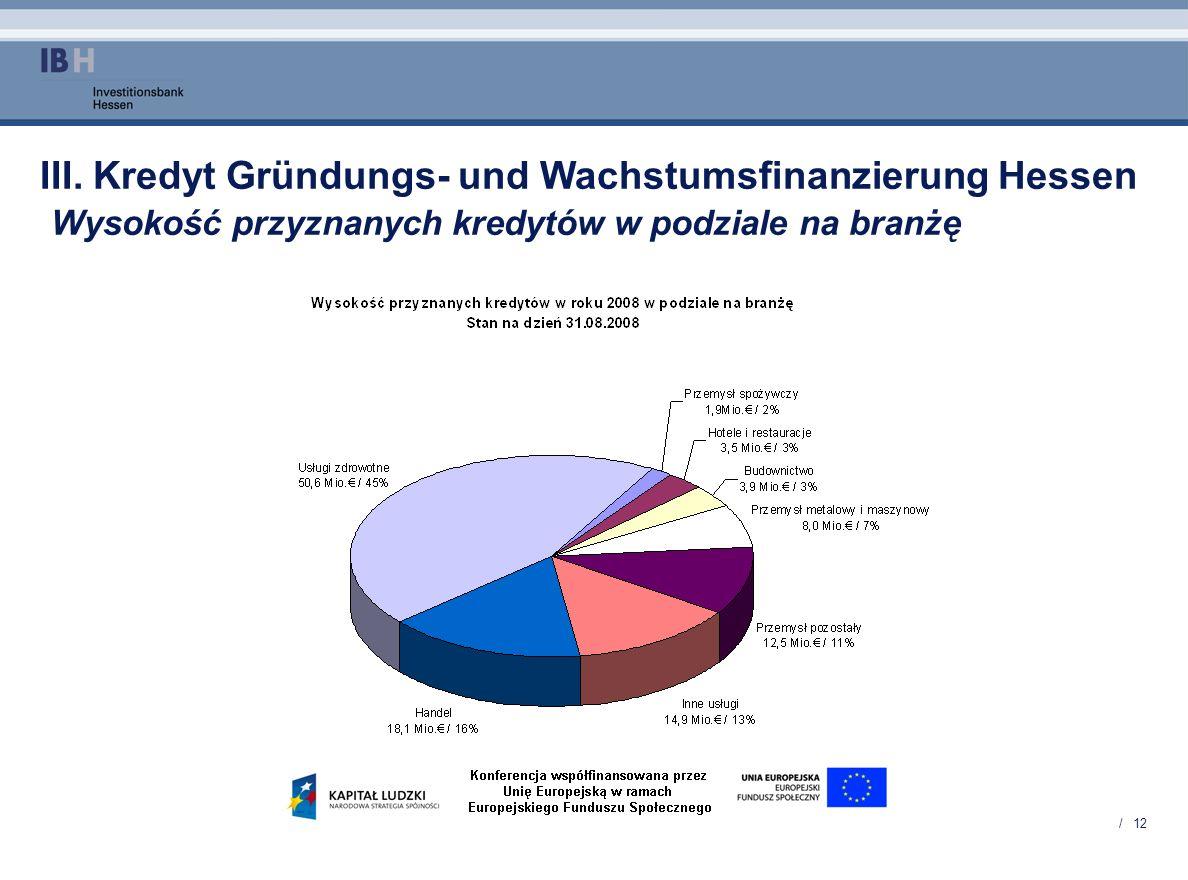 / 12 III. Kredyt Gründungs- und Wachstumsfinanzierung Hessen Wysokość przyznanych kredytów w podziale na branżę