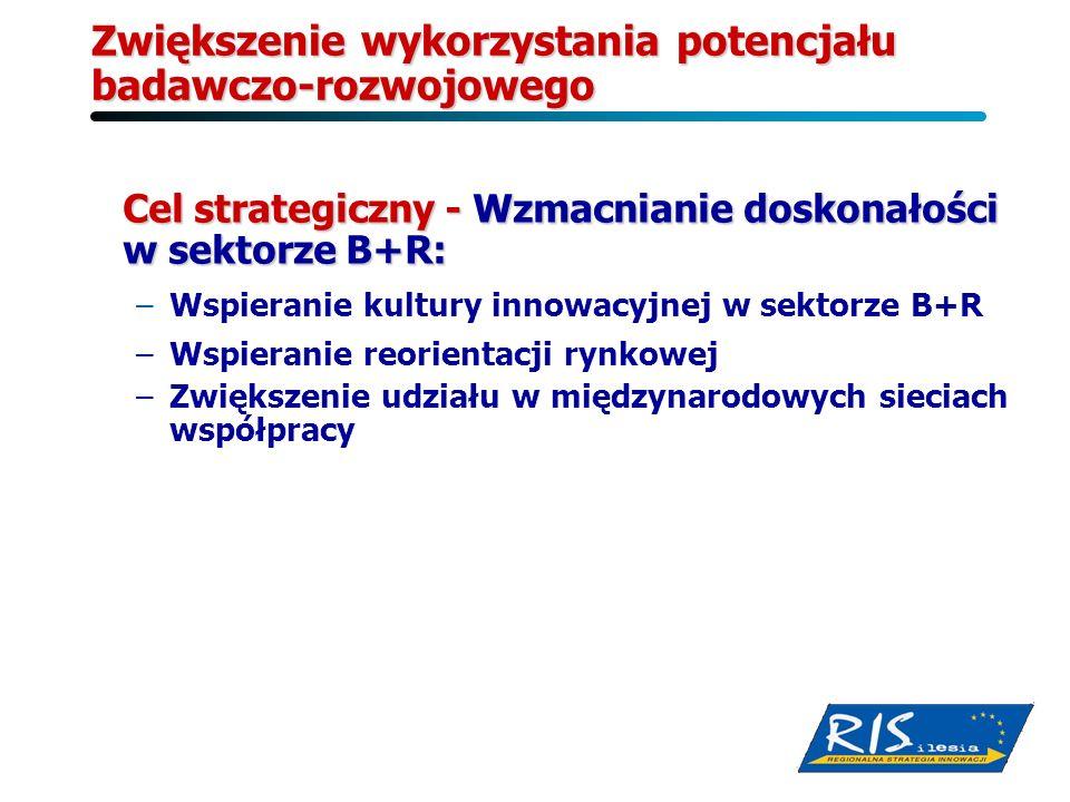 Zwiększenie wykorzystania potencjału badawczo-rozwojowego Cel strategiczny - Wzmacnianie doskonałości w sektorze B+R: –Wspieranie kultury innowacyjnej