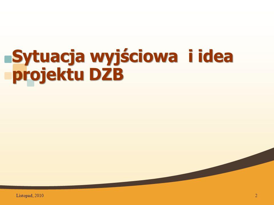 Podstawowe założenia organizacyjne Centrum koordynacyjne w siedzibie DBP Centralny katalog Centralna baza czytelników Centralna baza informacji o regionie Listopad, 201023