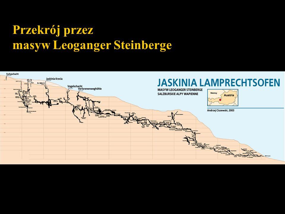 Przekrój przez masyw Leoganger Steinberge