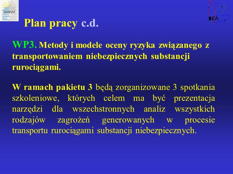 Plan pracy c.d. WP3.