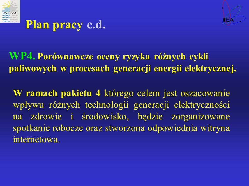 Plan pracy c.d. WP4.