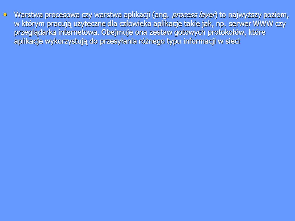 Warstwa procesowa czy warstwa aplikacji (ang. process layer) to najwyższy poziom, w którym pracują użyteczne dla człowieka aplikacje takie jak, np. se