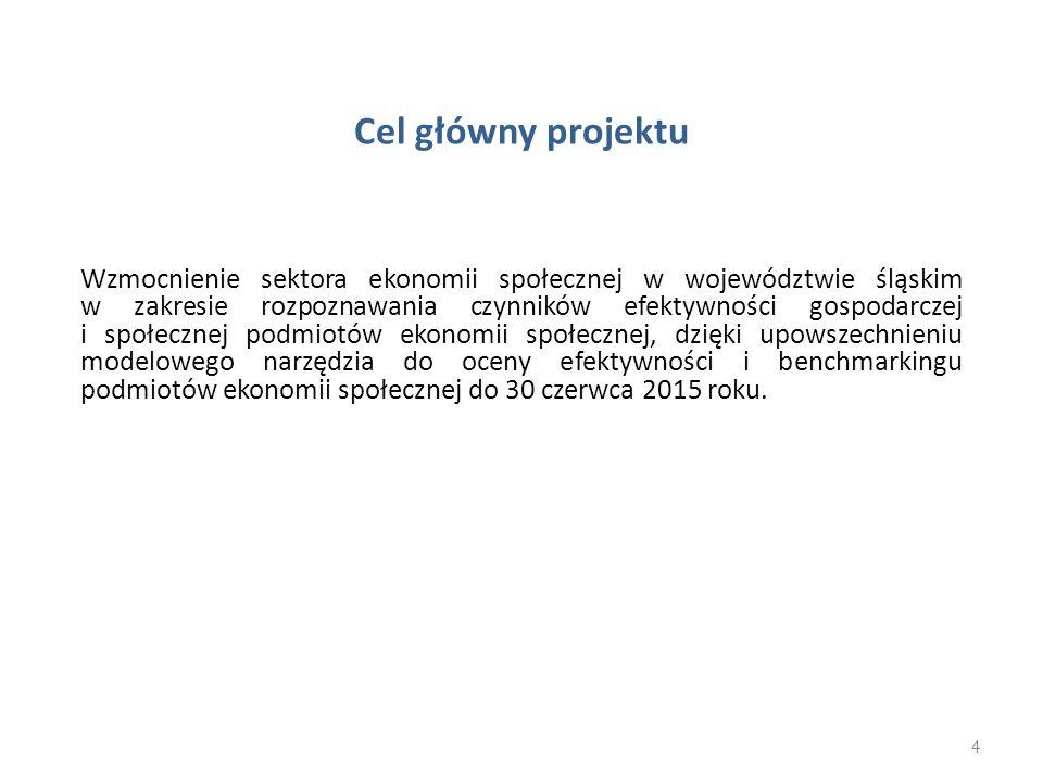 Cel główny projektu Wzmocnienie sektora ekonomii społecznej w województwie śląskim w zakresie rozpoznawania czynników efektywności gospodarczej i społ