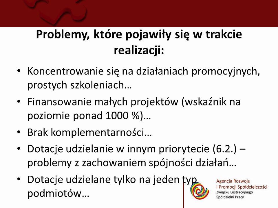 Problemy, które pojawiły się w trakcie realizacji: Koncentrowanie się na działaniach promocyjnych, prostych szkoleniach… Finansowanie małych projektów