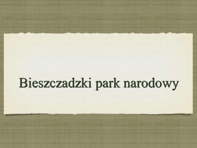 Bieszczadzki park narodowy Bieszczadzki park narodowy