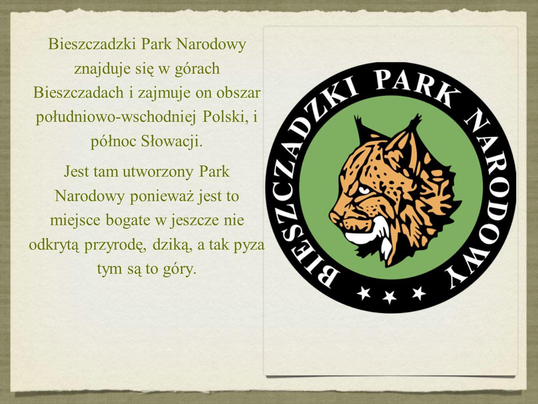 Bieszczadzki Park Narodowy znajduje się w górach Bieszczadach i zajmuje on obszar południowo-wschodniej Polski, i północ Słowacji. Jest tam utworzony