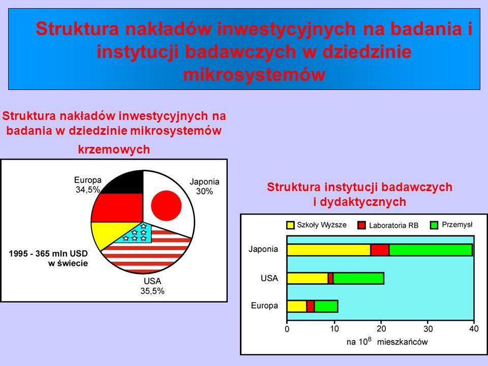 Struktura nakładów inwestycyjnych na badania i instytucji badawczych w dziedzinie mikrosystemów Struktura nakładów inwestycyjnych na badania w dziedzi