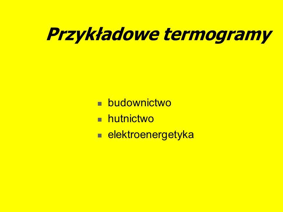 Przykładowe termogramy budownictwo hutnictwo elektroenergetyka