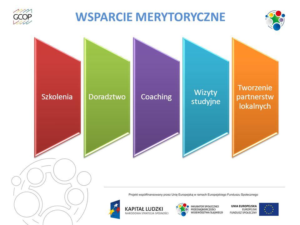 WSPARCIE MERYTORYCZNE Infrastruktura Dotacje na zakładanie spółdzielni socjalnych